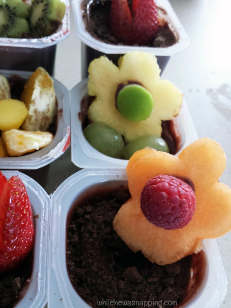 Spring Snack Packs Pudding Flower Garden cantaloupe