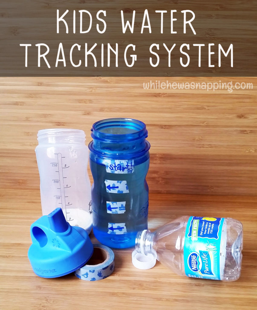 Staying Hydrated Nestle Pure Life Water Tracking System Vertical