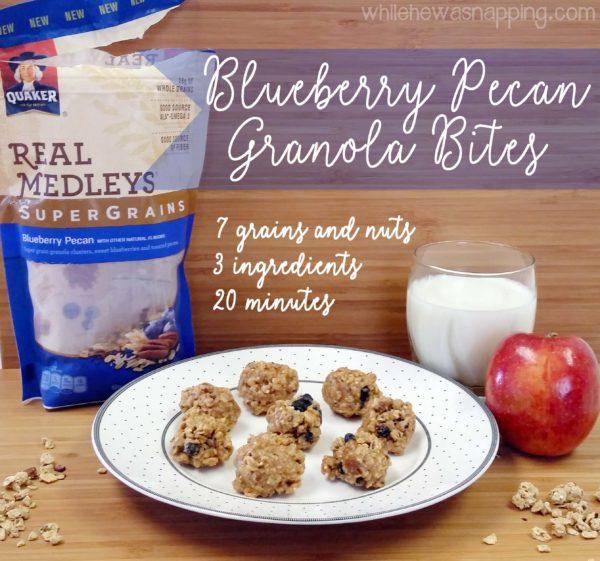 Blueberry Pecan Granola Bites